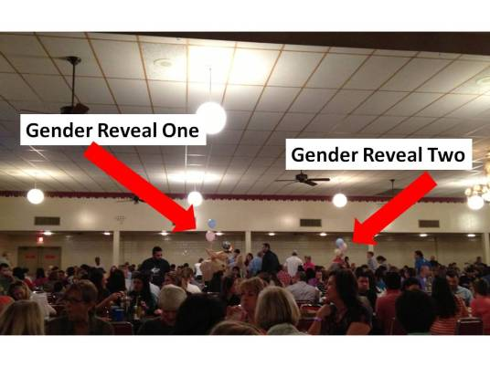 Bingo Gender Reveal